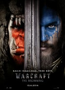 Warcraft: the Beginning, 3D